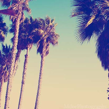 Venice Beach Palm Trees Fine Art Print Nautical Shabby Chic Ocean Photography Sea California