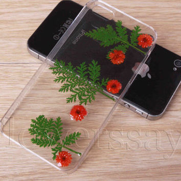 iPhone 6 case iPhone 6 plus Pressed Flower, iPhone 5/5s case, iPhone 4/4s case,  5c case Galaxy S4 S5 Note 2 note 3 Real Flower case NO:F229