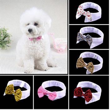 All Occasion Bowtie Collar - Cats/Dog
