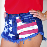 Stars And Stripes Shorts: Denim | Hope's