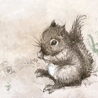 Winston the Little Baby Squirrel Guy by RenataandJonathan on Etsy