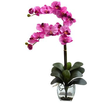 Artificial Flowers -Double Phal Orchid With Vase No2 Silk Plant