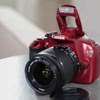 Canon Rebel T5 18MP DSLR Camera w/18-55 & 75-300mm USM Lenses & Accs. - E227334 — QVC.com
