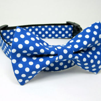 Royal Blue Polka Dot  Dog Collar  with bow tie set(Mini,X-Small,Small,Medium ,Large or X-Large Size)- Adjustable
