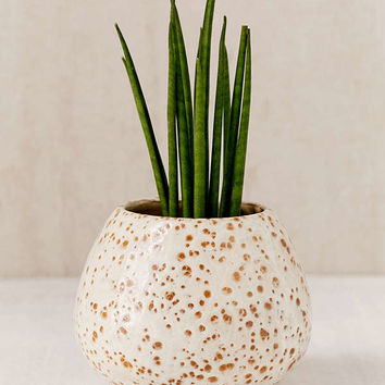 Patricia Glazed Ceramic Planter | Urban Outfitters