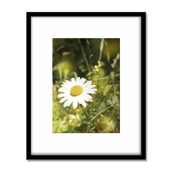 Flower Photography Print, Daisy Wall Art, Summer Photo, Yellow Wall Art, Summer Glow, Home Deco