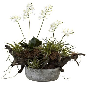 Artificial Flowers -Orchid And Succulent Garden With Driftwood Decorative Vase