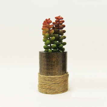 Round Wood Succulent Planter Pot, Indoor Garden Planter, Modern Plant Holder, Cacti Planter, Office Planter, Wooden Planter, Rustic Planter