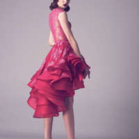 2016 Fuchsia Lace High Low Short Prom Cocktail Dresses Sexy Ilusion High Neck Short Front Long Back Cocktail Robe De Cocktail