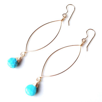Siena Sleeping Beauty Turquoise Drop Earrings