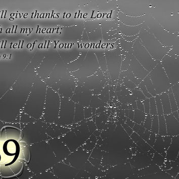 Bible Note Card - Psalm 9:1 - Spider web Photo - Scripture Greeting Card