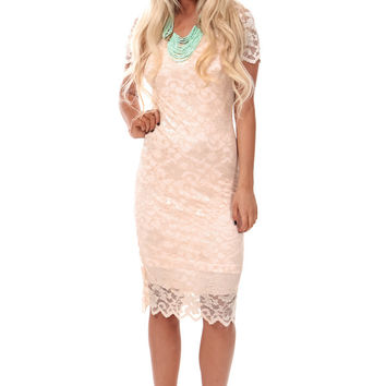 Blush Floral Lace Fitted Dress