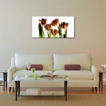 Tulip fine art photography, flower fine art print, spring wall decor, floral photo print, orange brown home decor print, living room art
