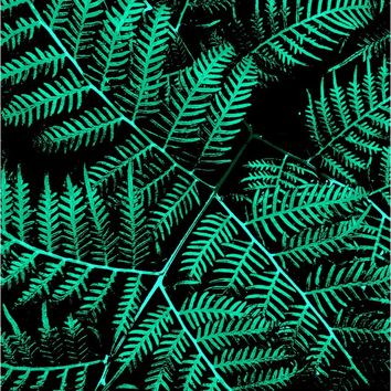 Mint Bracken by Moonshine Paradise on Crated