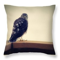 """The Visitor Lake Huron Michigan Throw Pillow for Sale by Marysue Ryan - 14"""" x 14"""""""