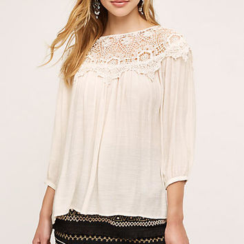 Moliet Lace Top