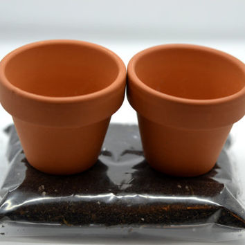2 Small Mini Clay Ceramic Planters with Soil