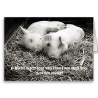 A Friend's Note/Greeting Card with Pigs Hugging