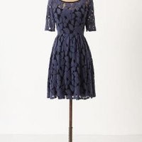 Unconditional Osier Dress - Anthropologie.com