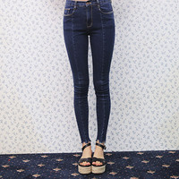 Seamed Front Skinny Jeans (Blue) | STYLENANDA