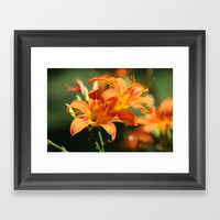 Day Lily Dance Framed Art Print by Theresa Campbell D'August Art