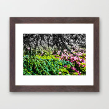 NATURE'S JOY Framed Art Print by catspaws