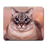 Blue Eyed Fat Cat Large Mousepad
