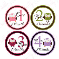 Monthly Onesuit stickers - Owls Girl (020-2), Baby Age Stickers, Growth Stickers, 1 to 12 months