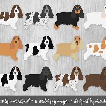 Cocker Spaniel Clipart Digital Gun Dog Breeds Sporting Dogs English Cocker Spaniel Black Red Roan Liver White Silver Tricolor Pet Scrapbook