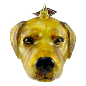 Slavic Treasures Ornament Yellow Lab Head Glass Ornament