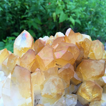 Large cabinet display Golden Healer Quartz Crystal Cluster points on matrix 5 pounds golden quartz healer Solaris Quartz