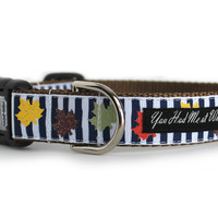 Crisp Fall Days Dog Collar