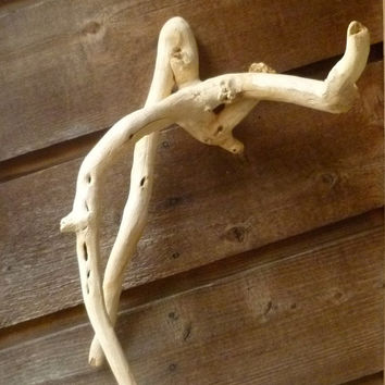 Driftwood  Wall Art, Natural Sculpture, Bleached Salvaged Wood,  Home Decor, Beach House Decor, Wall Art, Drift Wood Natural Reptile Cage