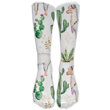 Llama Cactus Novelty Cotton Knee High All-Over Printed Socks