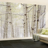 Autumn Aspens with Snow, Colorado, USA Wall Mural – Large at AllPosters.com