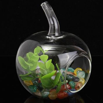 Crystal Glass Fruit Shape Flower Vase Terrarium