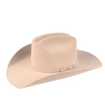 Stetson Bar None in Silverbelly Western Hat