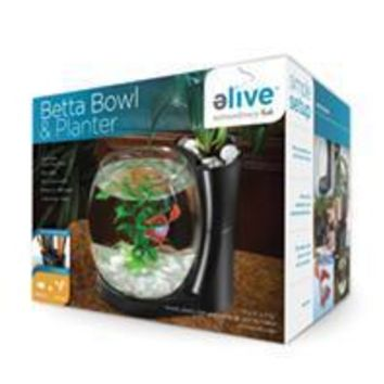 Elive Llc. - Betta Bowl And Planter