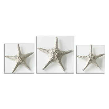 Silver Starfish Wall Art, Set of 3 by Uttermost