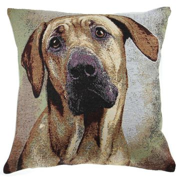 Soft Eyes II Decorative Pillow Cushion Cover