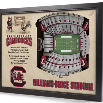 NCAA South Carolina Gamecocks Football 3D Stadium View Wall Art Williams-Brice