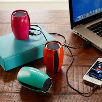 Go-Anywhere Mini Speaker