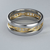 14K Two tone Gold DNA Ring