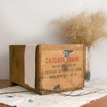 Vintage Crate Box wooden Cascade Co-operative Union Kelowna B.C. Canada brown farmhouse rustic cottage chic