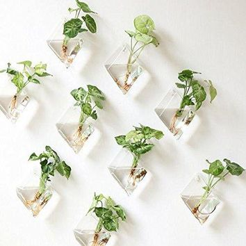 Set of 4 Wall Hanging Planters Glass Terrariums Hanging Flower Pots Air Plant Containers Air Plant Glass Pots