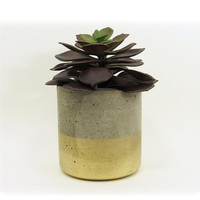Concrete Planter, Succulent Planter, Modern Planter, Gold Planter, Cement Planter, Air Plant Holder, Succulent Pot, Indoor Planter