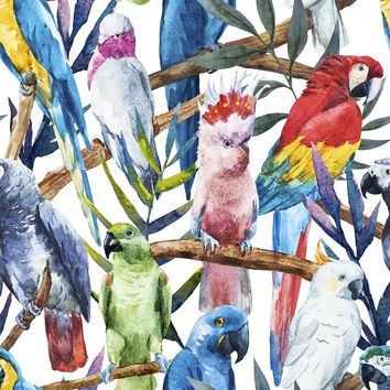 Paradise of Birds Removable Wallpaper