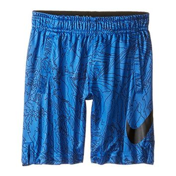 Nike Kids Dry Aop Fly Shorts (Toddler)