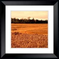 Landscape photography, farm photography, Field photography, large rustic poster wall art home decor
