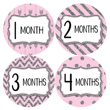 Baby Girl Monthly Milestone Baby Stickers Style #800